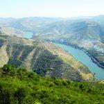 Portproeverij de rivier de Douro